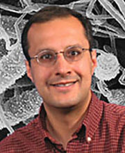 photo of salman qureshi: research on innate immunity, pneumonia, critical care research