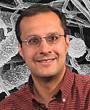 photo of salman qureshi: research on Innate immunity, forward genetics, pneumonia due to fungi, bacteria, viruses