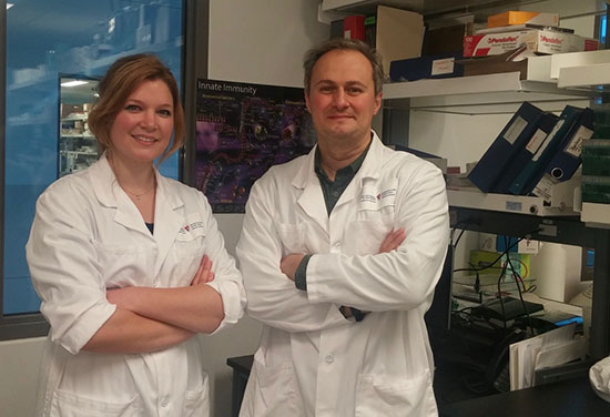 Reprogramming innate immune cells to fight tuberculosis