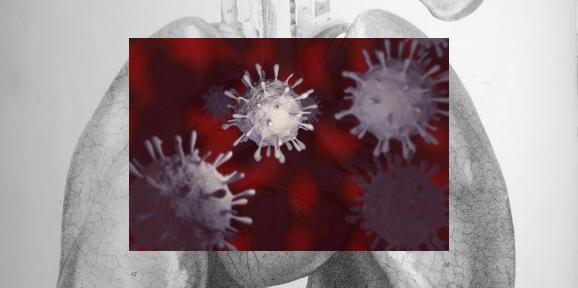 flu virus in the airways