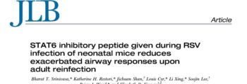 STAT6- Inhibitory Peptide May Reduce Incidence of RSV-Related Asthma
