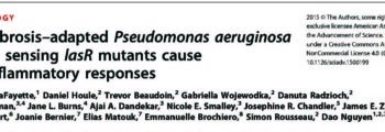 Variants of Pseudomonas aeruginosa Can Cause a Lot of Inflammation