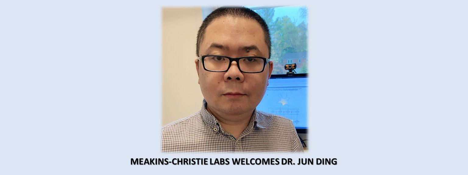 Meakins-Christie Laboratories welcomes Dr. Jun Ding, Assistant Professor in the Department of Medicine.
